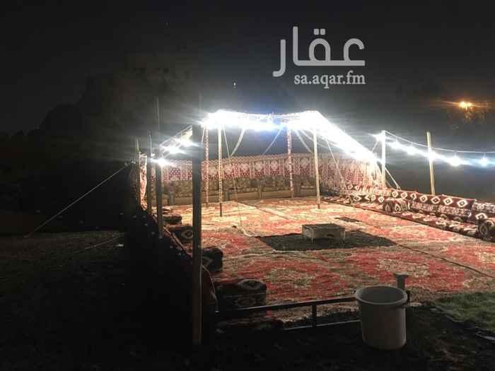 مخيم للإيجار في طريق الملك عبدالله ، حي ابرق الرغامة ، جدة ، جدة