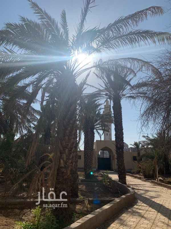 أرض للبيع في شارع الأمير محمد بن عبد العزيز ، حي مهزور ، المدينة المنورة ، المدينة المنورة