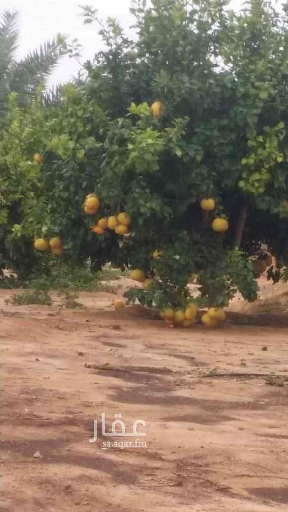 مزرعة للبيع في العلا