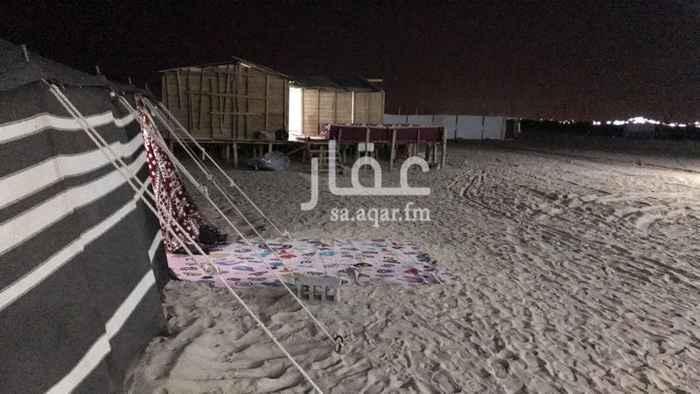 مخيم للإيجار في حي المطار ، الدمام ، الدمام