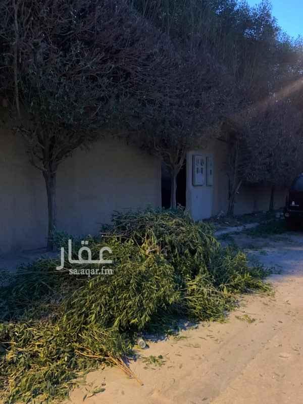 شقة للإيجار في شارع ابن ترجم ، حي الاندلس ، الرياض ، الرياض