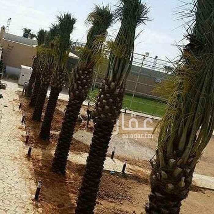مزرعة للبيع في شارع عثمان بن عفان, بقيق