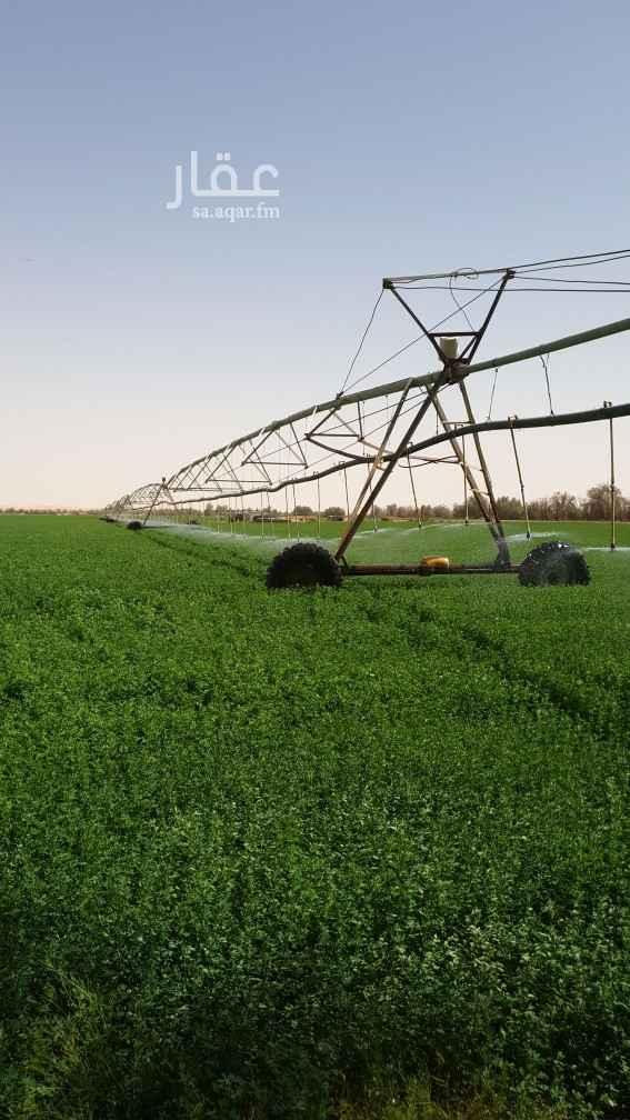 مزرعة للبيع في الخطة ، حائل