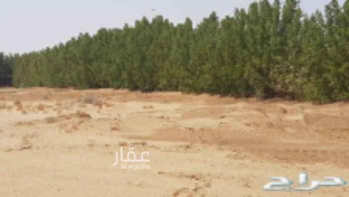 أرض للإيجار في شارع وادي أمج ، حي الدف ، خليص