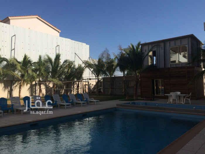 شقة للإيجار في طريق الملك عبدالعزيز ، حي المرجان ، جدة