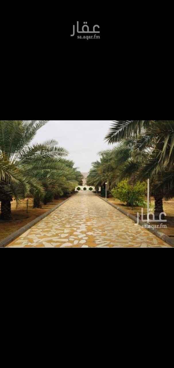مزرعة للبيع في شارع وادي لبن ، الرياض ، الرياض