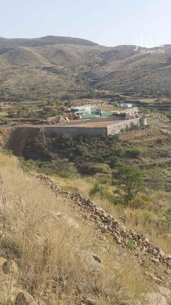 مخيم للإيجار في آل محمود ، أبهــــا