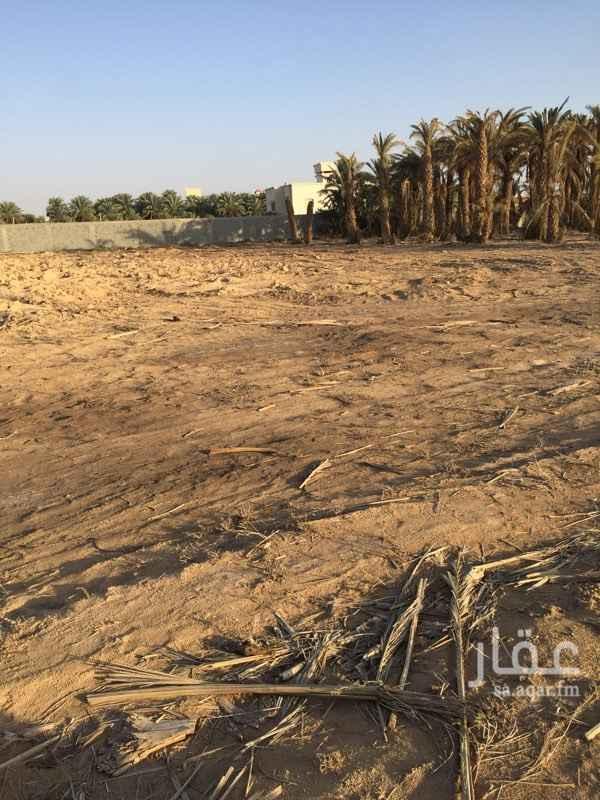 أرض للإيجار في حوطة بني تميم ، حوطة بنى تميم