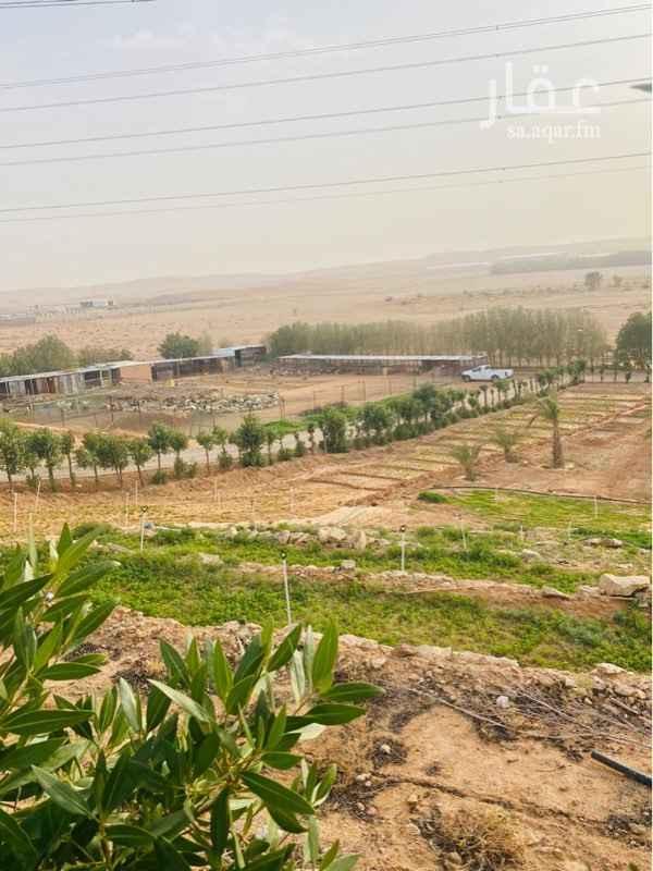 مزرعة للبيع في حي هيت ، الرياض ، الرياض