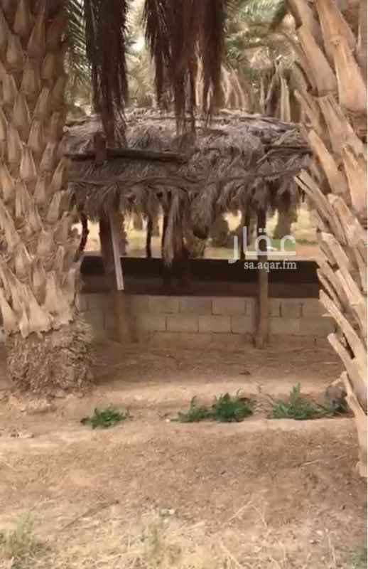 مزرعة للبيع في طريق الملك عبدالعزيز ، التنومه ، الاسياح
