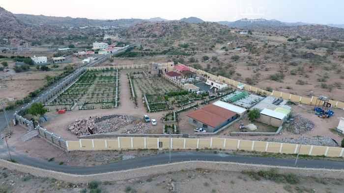 مزرعة للبيع في طريق الشفــا ، الطائف