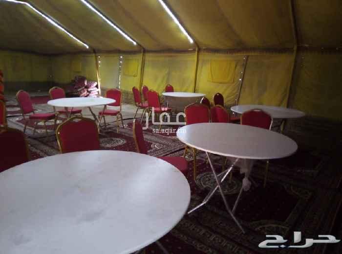 مخيم للإيجار في بريدة