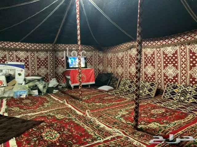 مخيم للإيجار في الجموم
