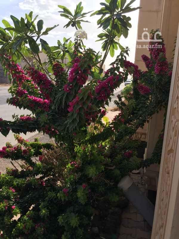 أرض للبيع في ظهرة لبن, الرياض