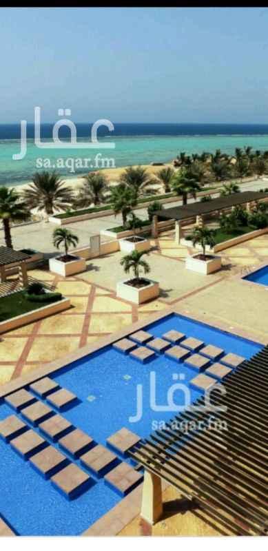 شقة للبيع في الشاطئ 2 ، حي البيلسان ، مدينة الملك عبد الله الاقتصادية
