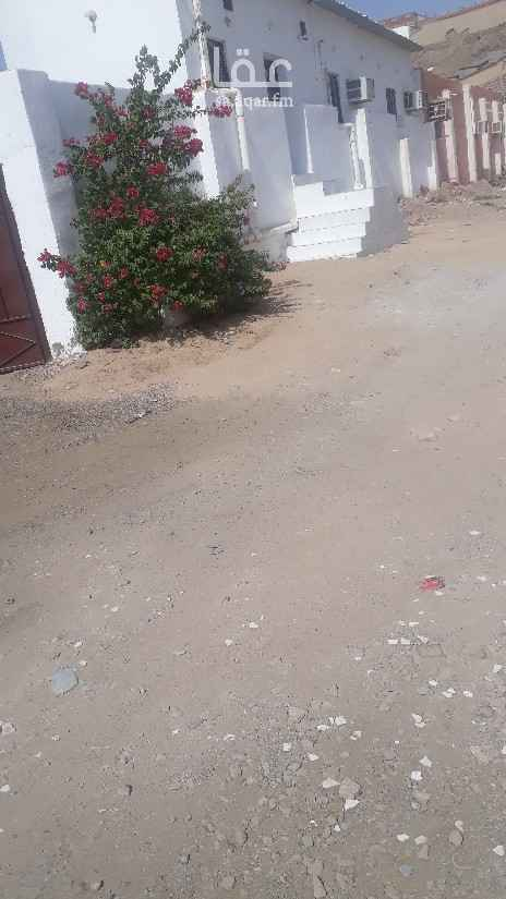 بيت للإيجار في حي الاجاويد ، جدة ، جدة