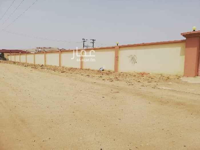 أرض للإيجار في وادي ابن هشبل