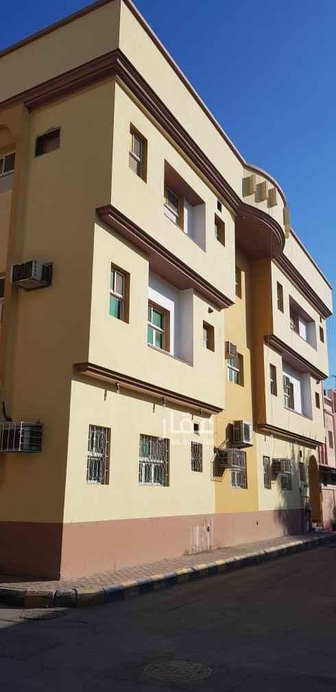 دور للإيجار في شارع حمزة بن عمار ، حي العدامة ، الدمام ، الدمام