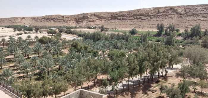 مزرعة للبيع في حي الحائر ، الرياض ، الرياض
