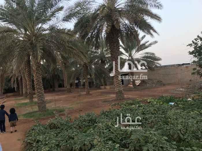 استراحة للإيجار في شارع محمد بن مسلم العثيمين ، حي مطار الملك خالد الدولي ، الرياض ، الرياض