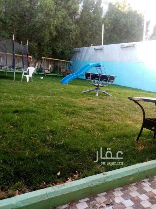 استراحة للإيجار في شارع وهيب بن عمير ، حي السامر ، جدة ، جدة