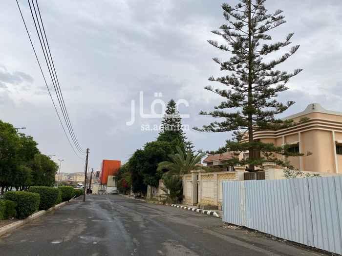 أرض للإيجار في شارع الامير محمد بن عبدالعزيز ، حي النسيم ، أبها ، أبهــــا