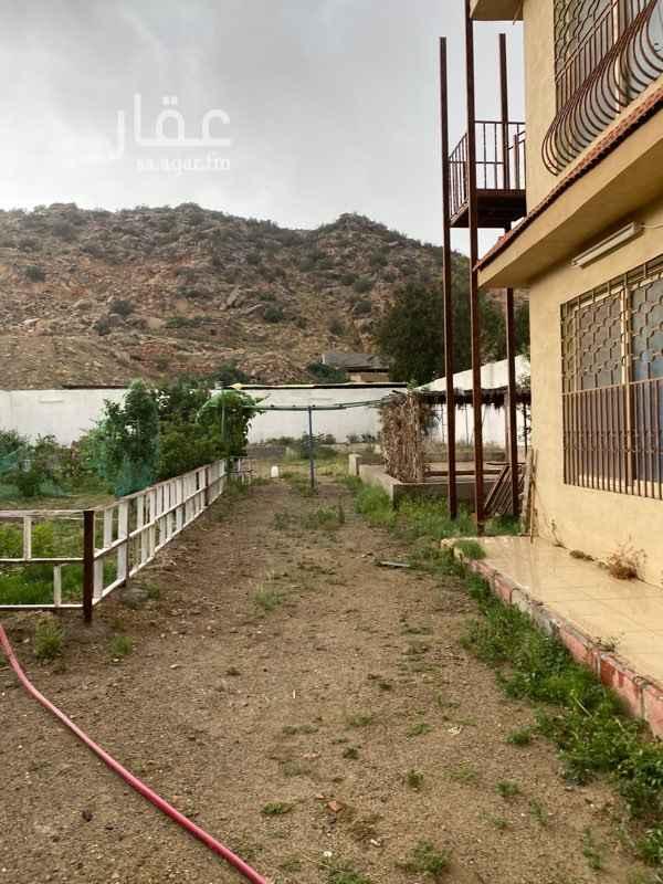 مزرعة للبيع في حي الهدا ، الطائف ، الطائف