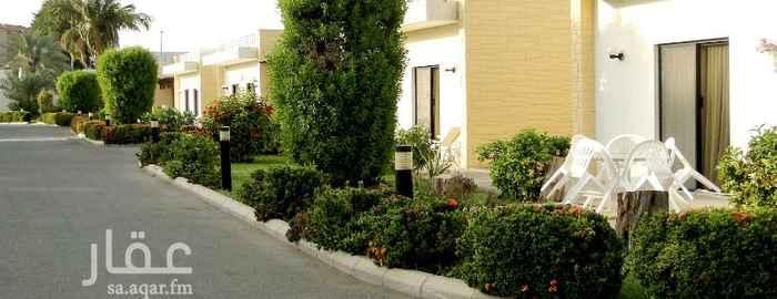 شقة للإيجار في شارع مستشفى الولاده ، حي الحمراء ، جدة ، جدة