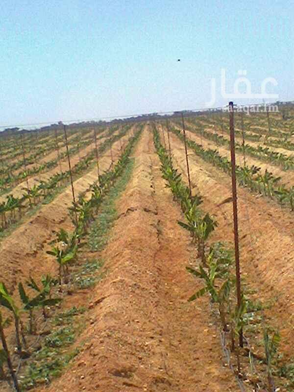 أرض للبيع في طريق الملك فهد ، الخرج