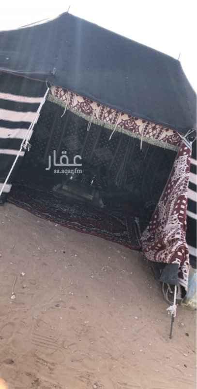 مخيم للإيجار في شارع وادي الساحل ، الرياض ، الرياض
