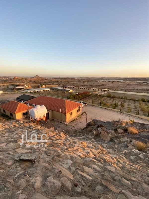 مزرعة للبيع في وادي ابن هشبل ، خميس مشيط
