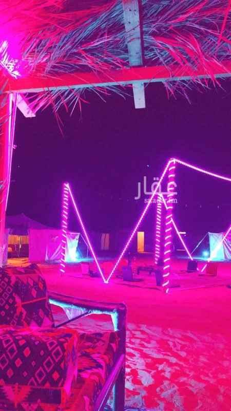 مخيم للإيجار في الرياض ، شارع الثمامة ، حي مطار الملك خالد الدولي ، الرياض ، الرياض