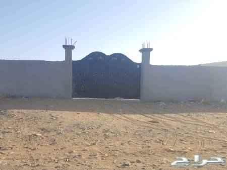 أرض للإيجار في المملكة العربية السعودية