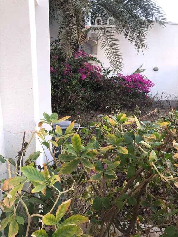 فيلا للإيجار في شارع أسماء بنت عميس ، حي الشاطئ ، جدة ، جدة