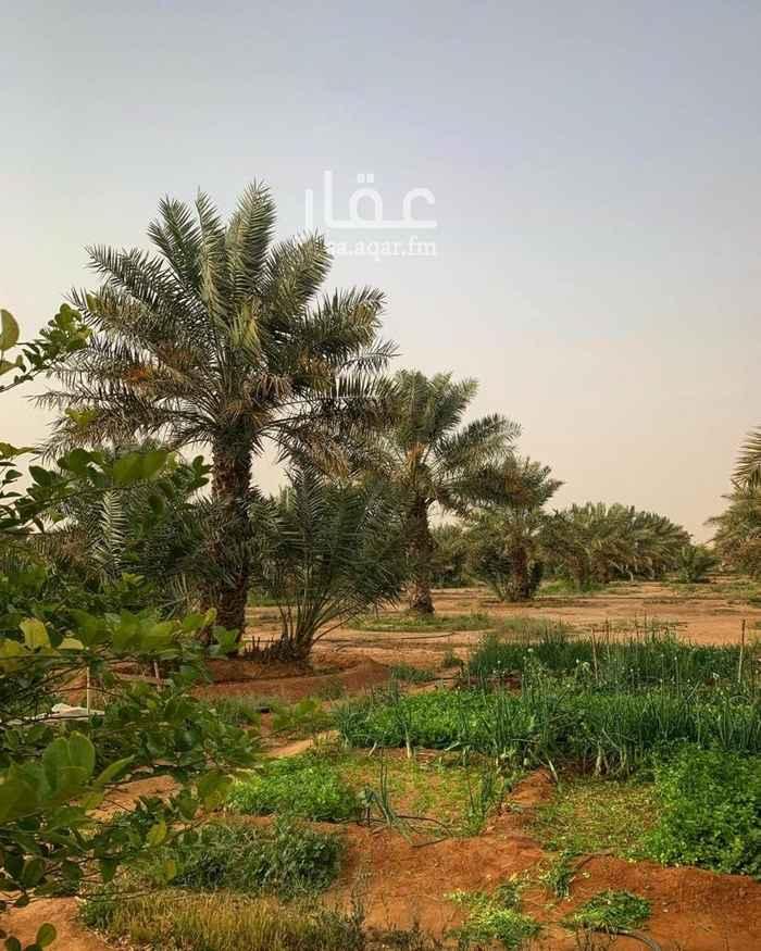 مزرعة للبيع في حي ، شارع عقيل عطاس ، حي العارض ، الرياض ، الرياض