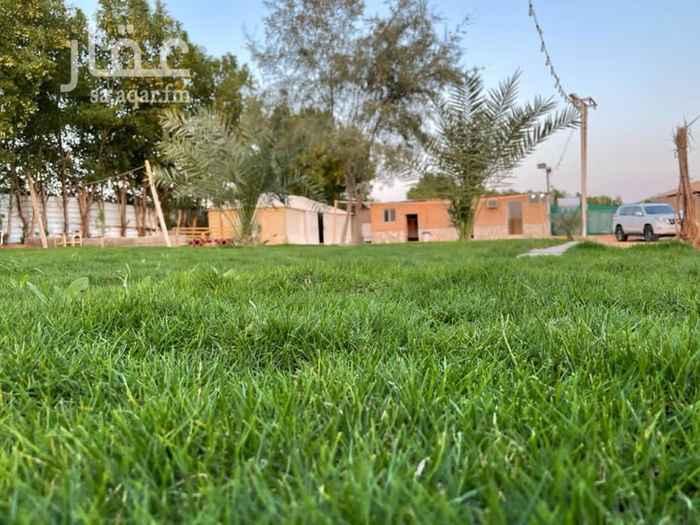 مخيم للإيجار في حي ام الشعال ، الرياض ، الرياض