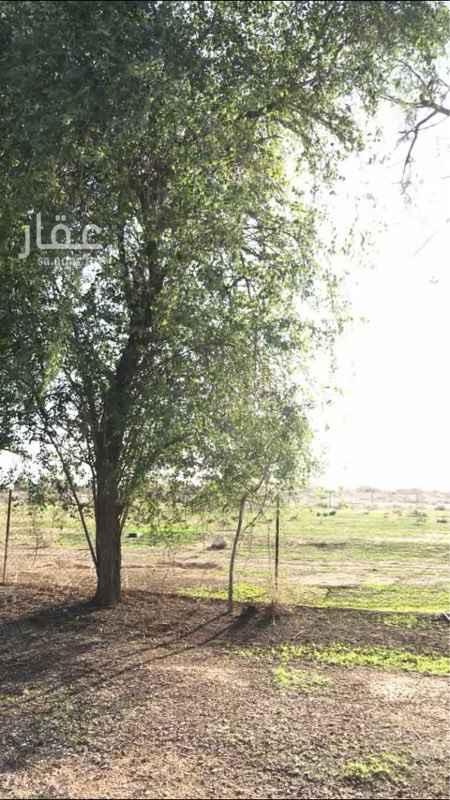 مزرعة للبيع في طريق الملك سعود ، حريملاء ، الدرعية