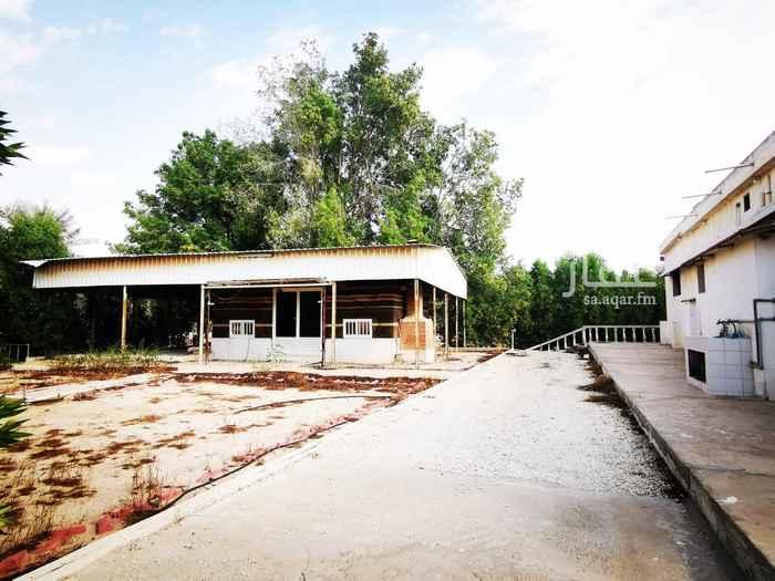 مزرعة للبيع في صفوى ، القطيف