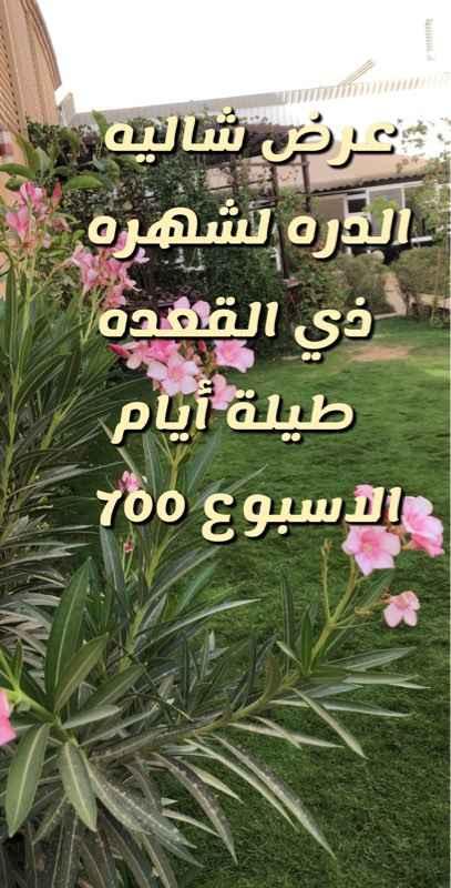 استراحة للإيجار في الرياض ، حي الروابي ، الرياض