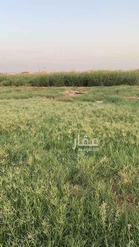 مزرعة للبيع في شارع يزيد بن الحكم ، حي البوادي ، جدة ، جدة