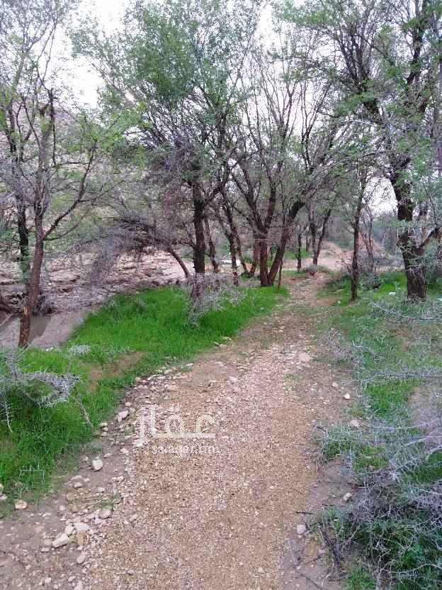 أرض للبيع في طريق الملك فهد ، حي السليمانية ، الخرج