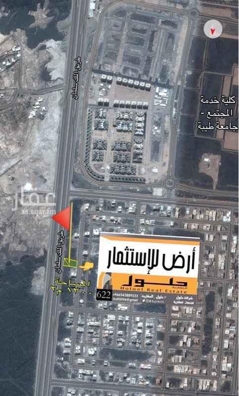 أرض للإيجار في شارع ثابت بن عدي, المدينة المنورة