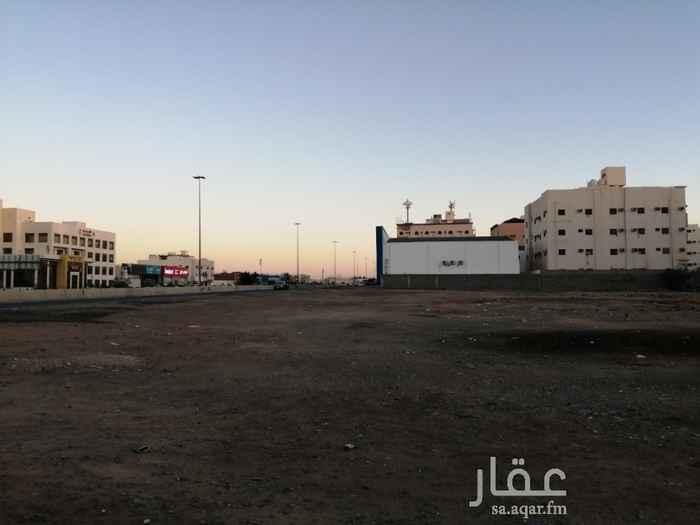 أرض للبيع في شارع الزعفرانى ، حي العريض ، المدينة المنورة ، المدينة المنورة