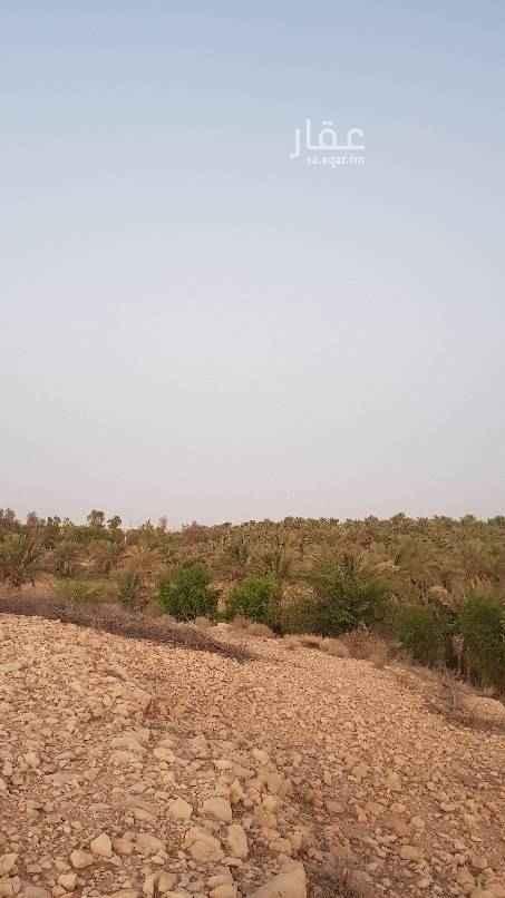 مزرعة للبيع في طريق العمارية ، الرياض