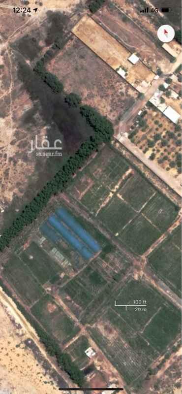 مزرعة للبيع في الجعيمة ، القطيف