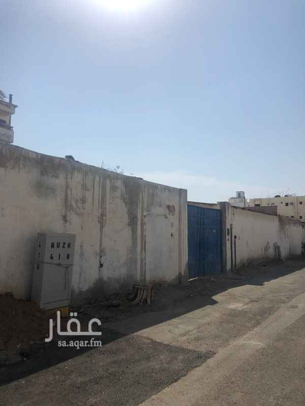 أرض للإيجار في شارع ابو اميه الشعباني ، حي النعيم ، جدة ، جدة