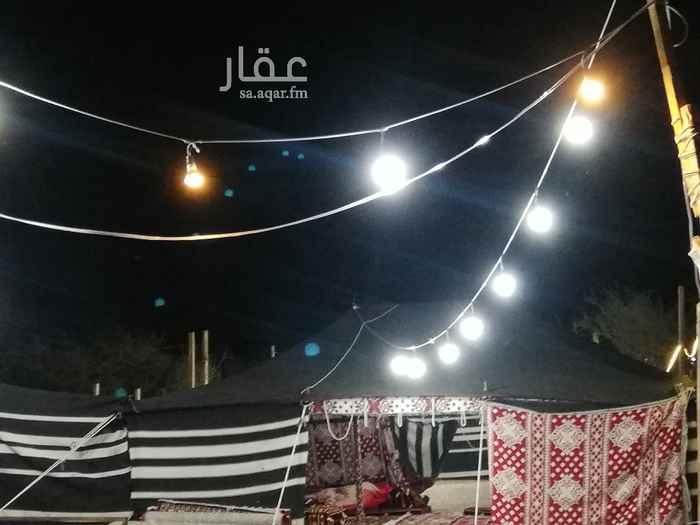 مخيم للإيجار في طريق البرزة ، البرزة ، خليص