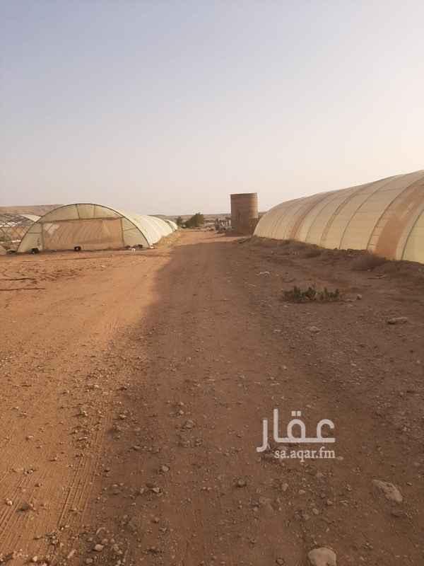 مزرعة للبيع في حفيرة نساح ، المزاحمية