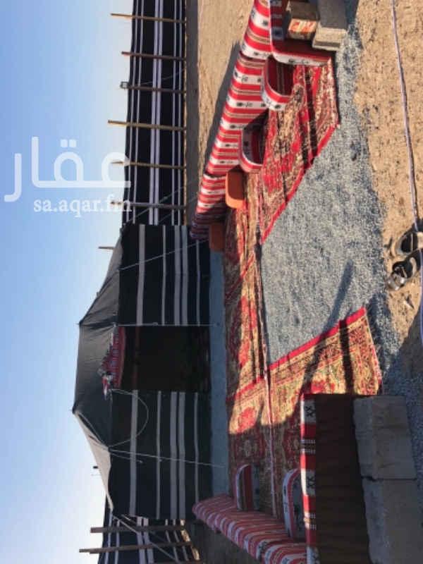 مخيم للإيجار في حي الخمرة ، جدة