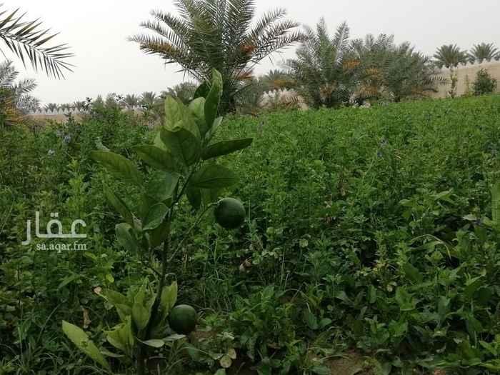 مزرعة للبيع في طريق الوصيل ، الجبيلة ، الرياض